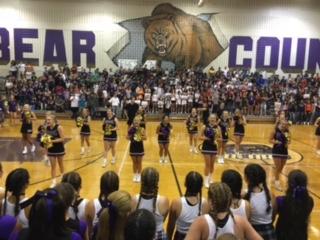 Team Spotlight: Varsity Cheerleading