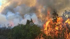 Wildfires Hit Central Florida