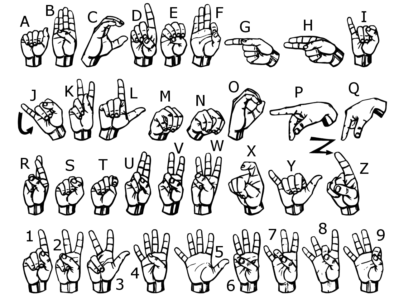 Students who learn ASL in school have the opportunity to act as the bridge between the hearing and deaf communities.