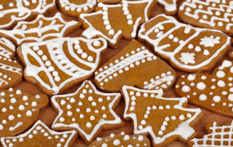 Bear Truth Holiday Treat Recipes (Gingerbread & Sugar Cookies, Yummm!)