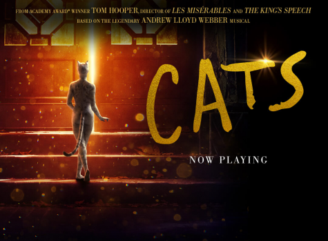 Cats scratches out at the box office