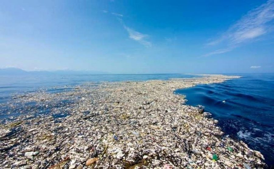 The Great Pacific Garbage Patch continues to grow