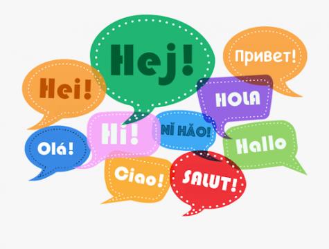 Students explain their take on world languages