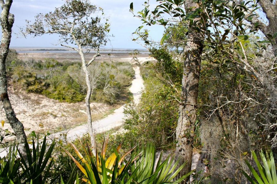 The Timucuan Preserve offers shady hikes during the summer.