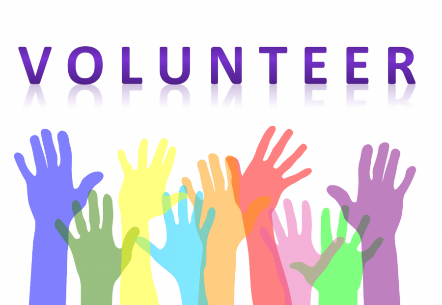 Volunteer at WSHS